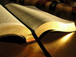 Bible Blameless