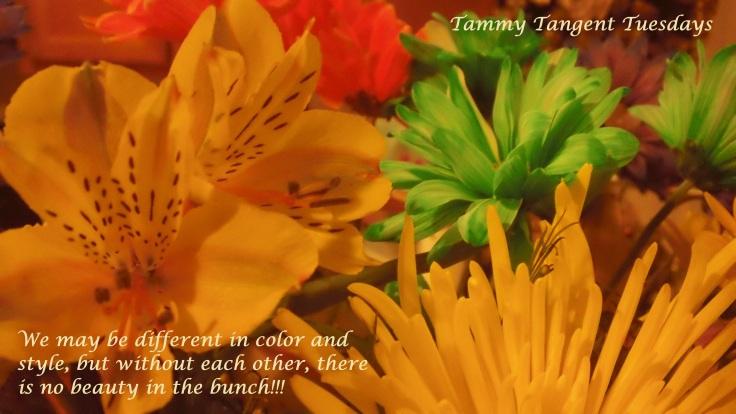 Tammy Tangent Tuesdays