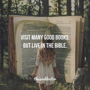 Blameless Bible