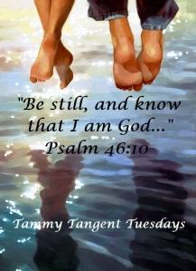 Blameless Psalm 46.10 TTT