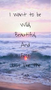 Blameless Wild, Beautiful, Free