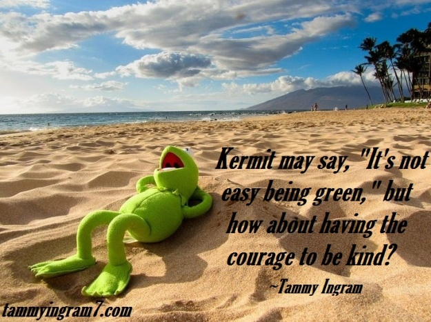 Blameless Kermit Courage 2.7