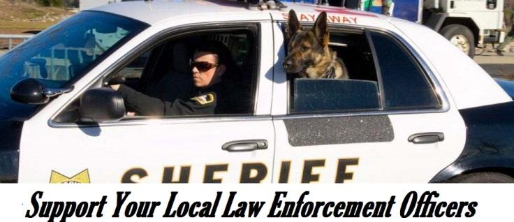 Blameless Police 3
