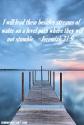 Blameless Jeremiah 31.9