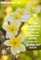Blameless Isaiah 46.4.1