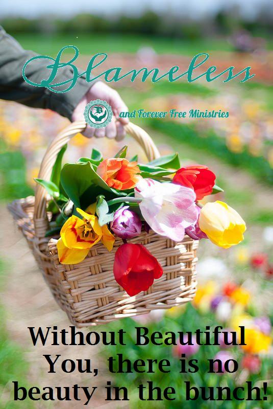 Blameless Basketful of Flowers 1