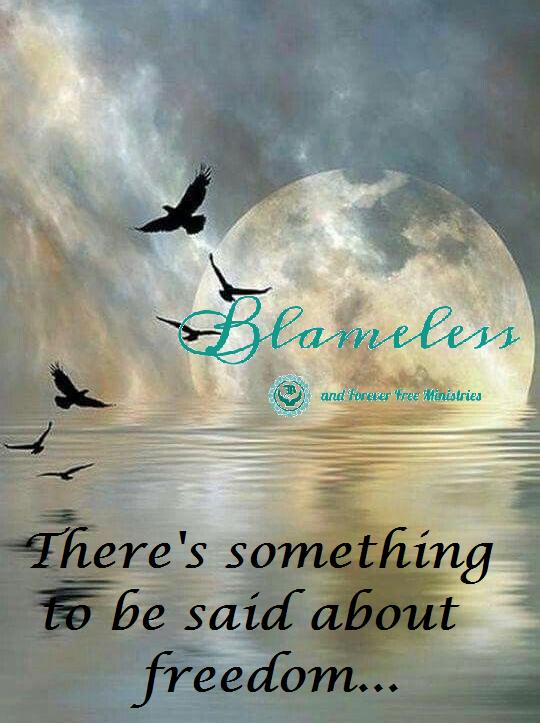 Blameless Freedom 2