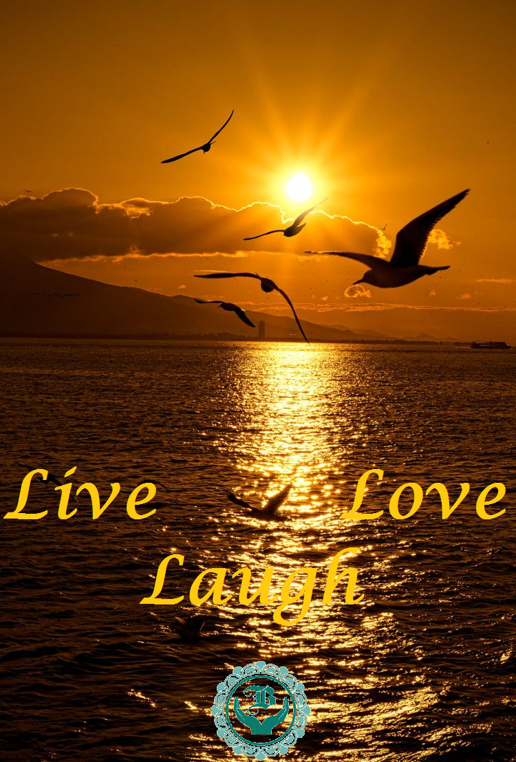 Blameless Live Laugh Love 1.1