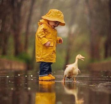 Dancing With Ducks 1