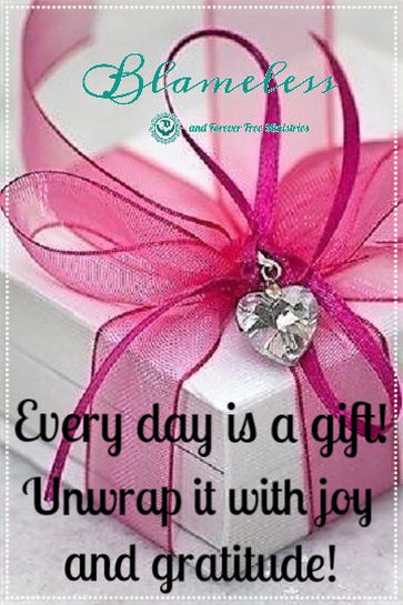 Blameless Every Day Is A Gift 2