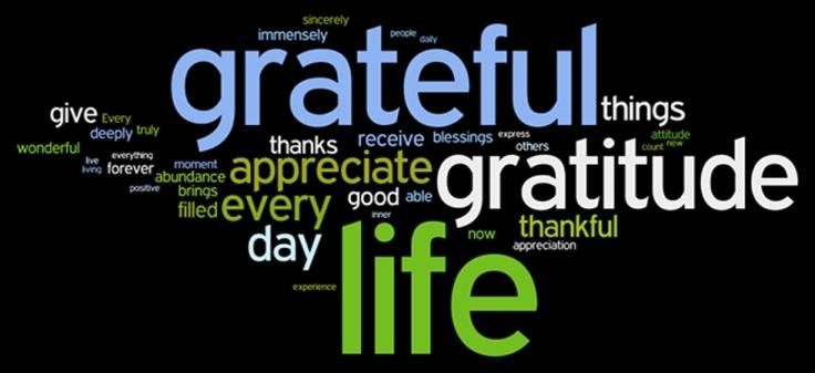 Blameless Grateful 2