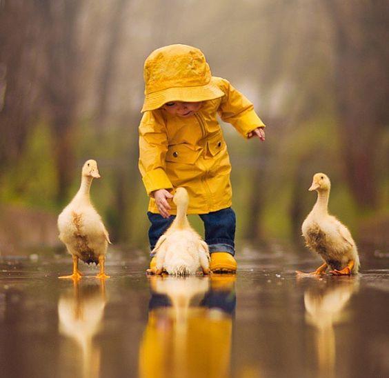 Dancing With Ducks 3