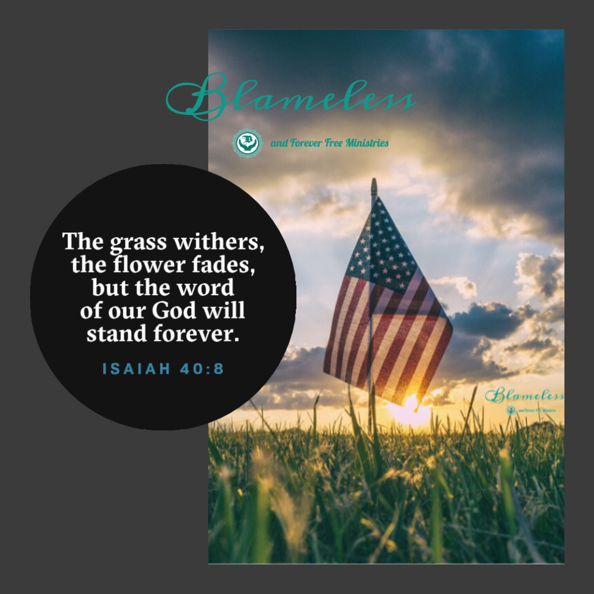 Blameless Isaiah 40:8, The grass withers, the flower fades, but the word of our God will stand forever.