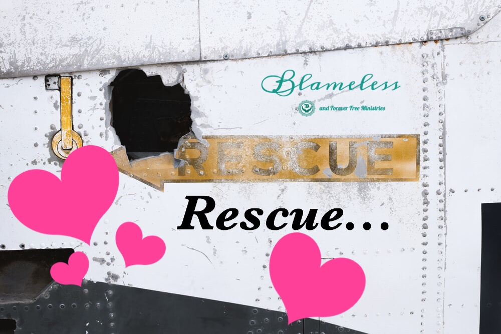 Blameless Rescue...